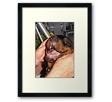 I'll Be Your Dog Framed Print