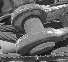 Rusty clevis by Larry  Grayam