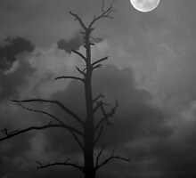 Desolate Moon by suzannem73