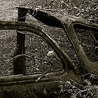 Rusty Car by tracyallenreedy