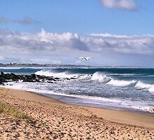 Bashams Beach by gypsygirl