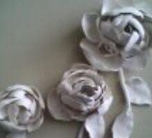 Roses beginning to Bloom by Alexandra  Bekiaris