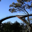 Bridge through the trees - Perth by sparkographic