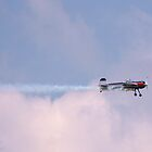 Air Show 3 by Linda Costello Hinchey