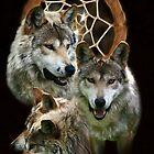 Wolf Dreams by Marija