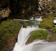Roaring Blue Creek by Karel Kuran