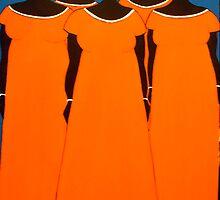 Orange Caribbean by Shulie1