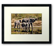 Like mother like daughter - Okavango Delta Framed Print