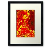 That's A Neon Sign, Right? WRONG! Framed Print