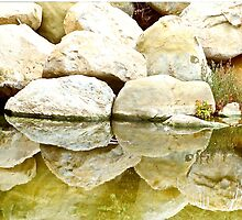 Rocks Reflected On Summerland Beach CA by Lexi