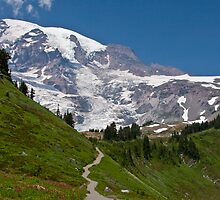 Mt. Rainier from the Alta Vista Trail, Paradise by Barb White