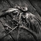 another dead birdie by ozzzywoman