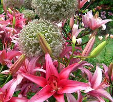 St. Louis Pink Lilies and Snowballs by Rebecca Luering