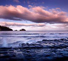 Tessellated Pavement 2 , Tasmania  by Sue Wilson (Kane)