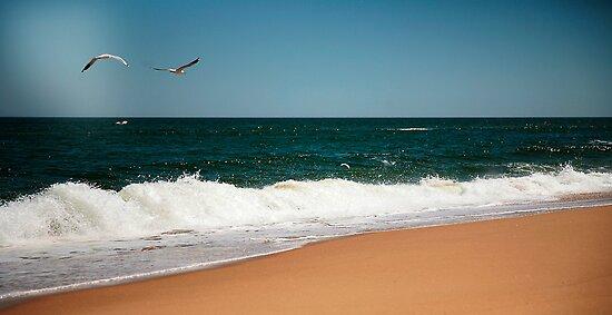 Lakes Entrance,Victoria,Australia by Rosina  Lamberti