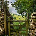 Gateway to the Dales by eddiej