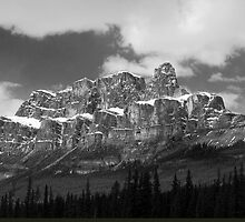 Castle Mountain ~ Banff National Park ~ Alberta by Barbara Burkhardt