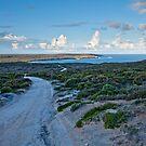 Innes National Park Landscape - Yorke Peninsula by AllshotsImaging