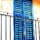 Blue Shutters by Lucas Himovitz