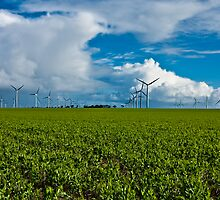Wattle Point Windfarm Cloudscape by AllshotsImaging