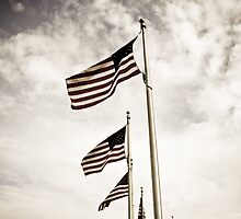 American Flags under the Washington Monument by taytehampton