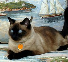 Bella, my little Princess ~ Olympia, Washington by Marjorie Wallace