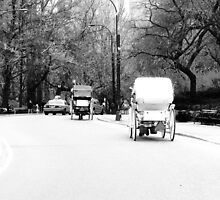 Horse & Carriage in Central Park by Ravia Khatun