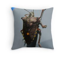 Forest Bug, Pentatoma rufipes Throw Pillow