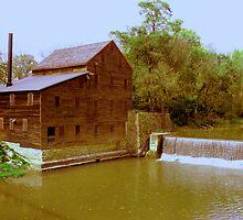 Pine Creek Grist Mill, Muskatine Iowa by Linda Miller Gesualdo