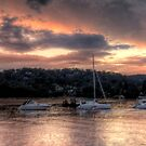 Apricot Surprise - Newport - The HDR Experience by Philip Johnson