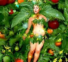 Tomato Fairy by janepriser