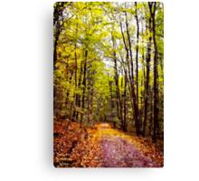 Autumn Country Lane I / Canvas Print