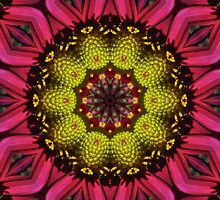 Red/pink petals with yellow center mandala. by Marilyn Baldey