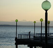 Sunset on Elliott Bay by Cathy Jones