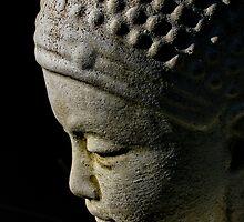 buddha. tasmania by tim buckley | bodhiimages