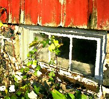 Grainery Window / by Shelley  Stockton Wynn