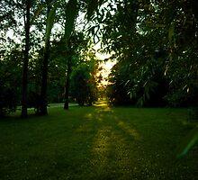 Sunset by FotogalleryYury