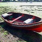 Boat at Bosham. by LumixFZ28