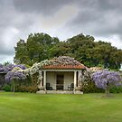 Vineyard HDR Panorama, Hole Park Gardens, Kent, England by Bob Culshaw