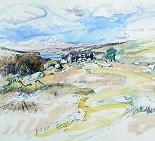 Down Tor to Burrator by Richard Sunderland