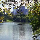 The Lake, Central Park, New York by Maggie Hegarty