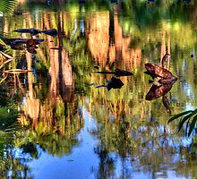 Monet's Reflection by Sue  Cullumber