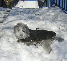 LOVE SNOW by elatan