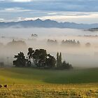 Morning in the Valley by Belinda Osgood