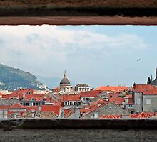 window to the rooftops by felicityp
