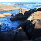 Elephant Rocks Panorama by Sheldon Pettit