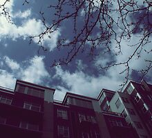 Bulding Versus Trees: A Battle in the Sky by jackshoegazer