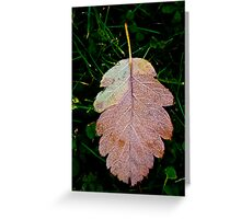 Reluctance Greeting Card