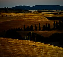 Tuscan Moon by Mary Ann Reilly