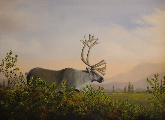Caribou by Rich Summers